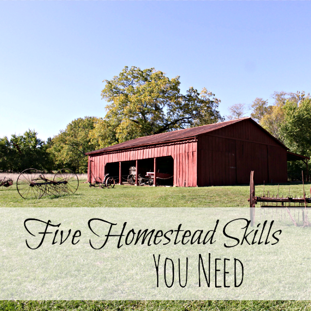 Five homestead skills you need to succeed in life and on the homestead.