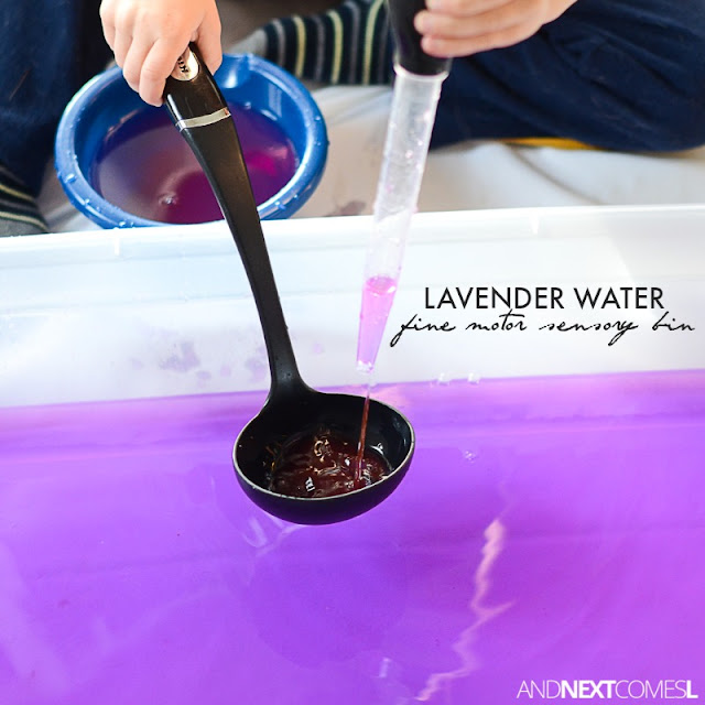 Lavender water fine motor sensory bin for toddlers and preschoolers from And Next Comes l
