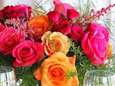 beautiful-roses-hdwallpapers-images