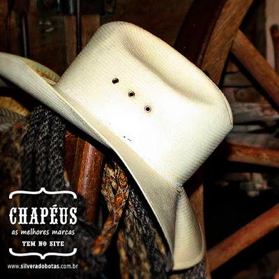 362f962413 Na loja country Silverado Botas, na internet, você encontra as melhores  marcas de chapéus de feltro, palha e couro. Vale a pena conferir os modelos  ...