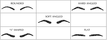 Different types of Eyebrow Shapes Chart