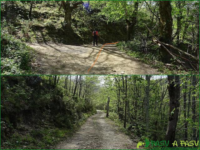 Camino de Priesca al Collado Piedrafita