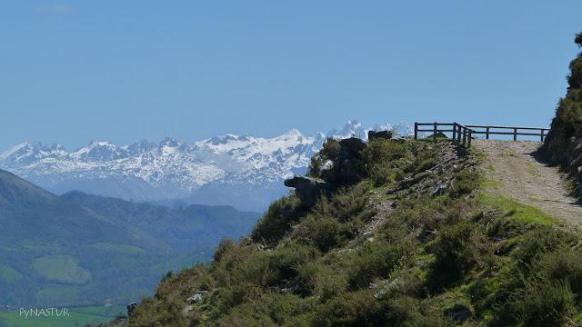 Picos de Europa desde La Sierra de Pesquerín - Piloña