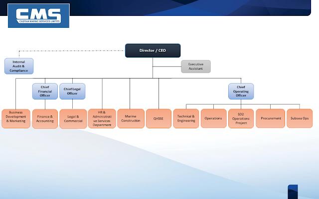 CMS Organizational Chart free