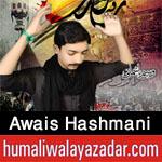 http://www.humaliwalayazadar.com/2016/10/awais-hashmani-nohay-2017.html
