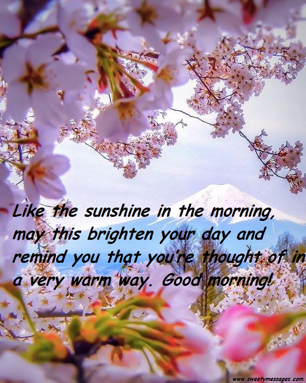 Sweet good morning text messages beautiful messages like the sunshine in the morning may this brighten your day and remind you that m4hsunfo Image collections