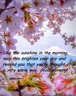 Like the sunshine in the morning, may this brighten your day and remind you that you're thought of in a very warm way. Good morning!
