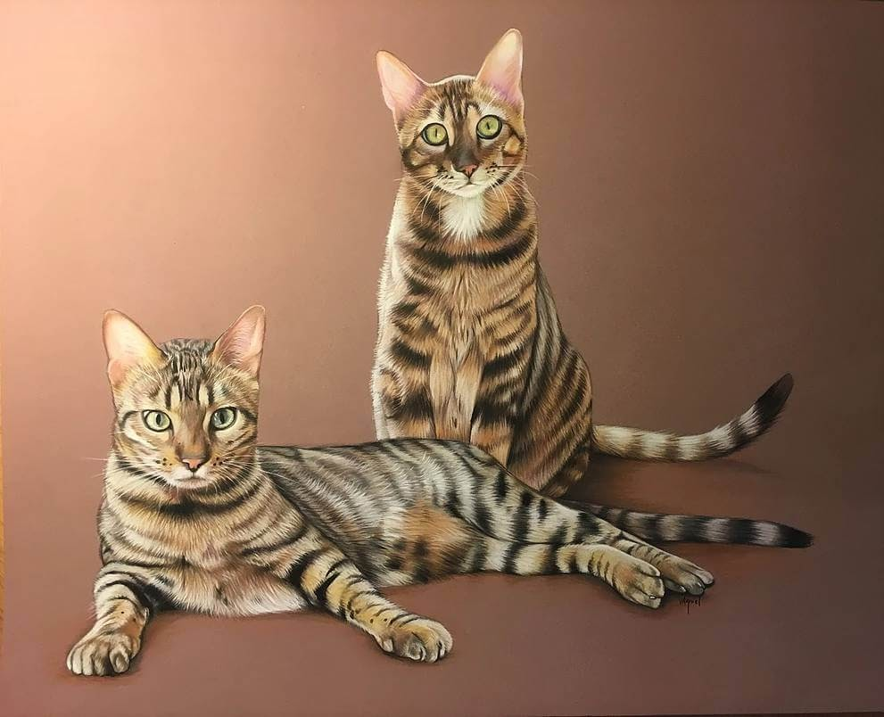 05-Bengal-Cats-Virginie-Agniel-Pastel-Drawings-of-Cats-and-Dogs-www-designstack-co