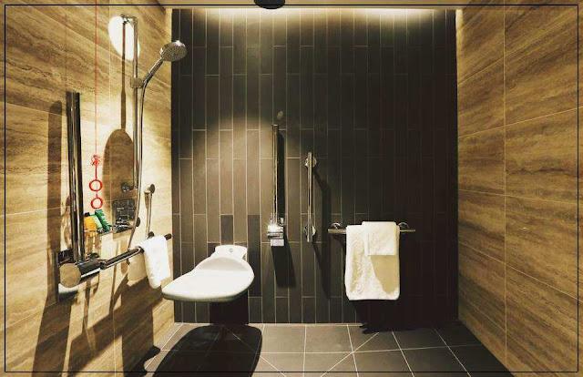 Impresii Camere HOTEL HILTON BANKSIDE din LONDRA