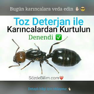 www.sozdebilim.com ❤
