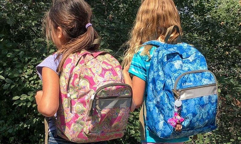 Καθιερώνεται η δράση  «Η τσάντα στο σχολείο»