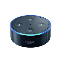 Amazon Echo: Home Automation Gone Naughty