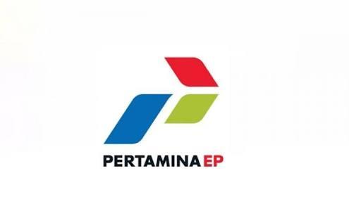 PT Pertamnia EP