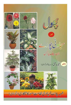 A Complete Guide About Plantation Of Flowers Indoor Outdoor Plants In Urdu Language This Booklet Is Written By Ashiq Ch Abdul Sattar