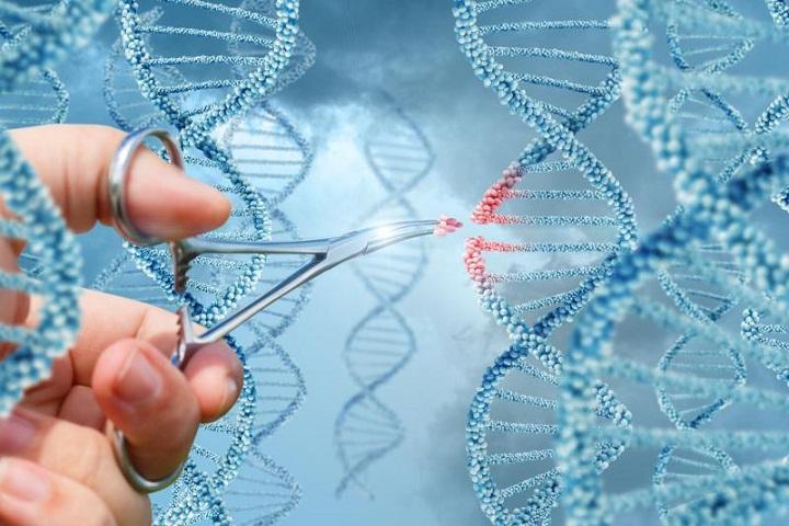 Upaya Menyelamatkan Penderita HIV/AIDS dengan Teknik Gunting DNA