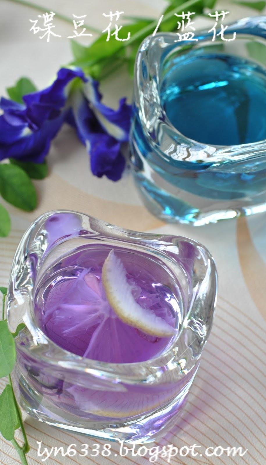 擁有幸福的味道: 蝶豆花茶