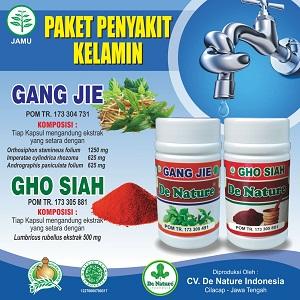 Apotik Yang Menjual Gang Jie Dan Gho Siah Asli