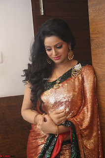 Udaya Bhanu lookssizzling in a Saree Choli at Gautam Nanda music launchi ~ Exclusive Celebrities Galleries 094.JPG
