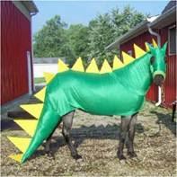 19 weird horse fancy dressing | Curious, Funny Photos ... |Horse Fancy Dress Costumes
