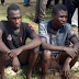 Benue Police Parade Deadly Kidnappers, Armed Robbers And Cultists (photos)