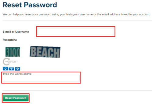 How to Find Your Password On Instagram - Jason-Queally