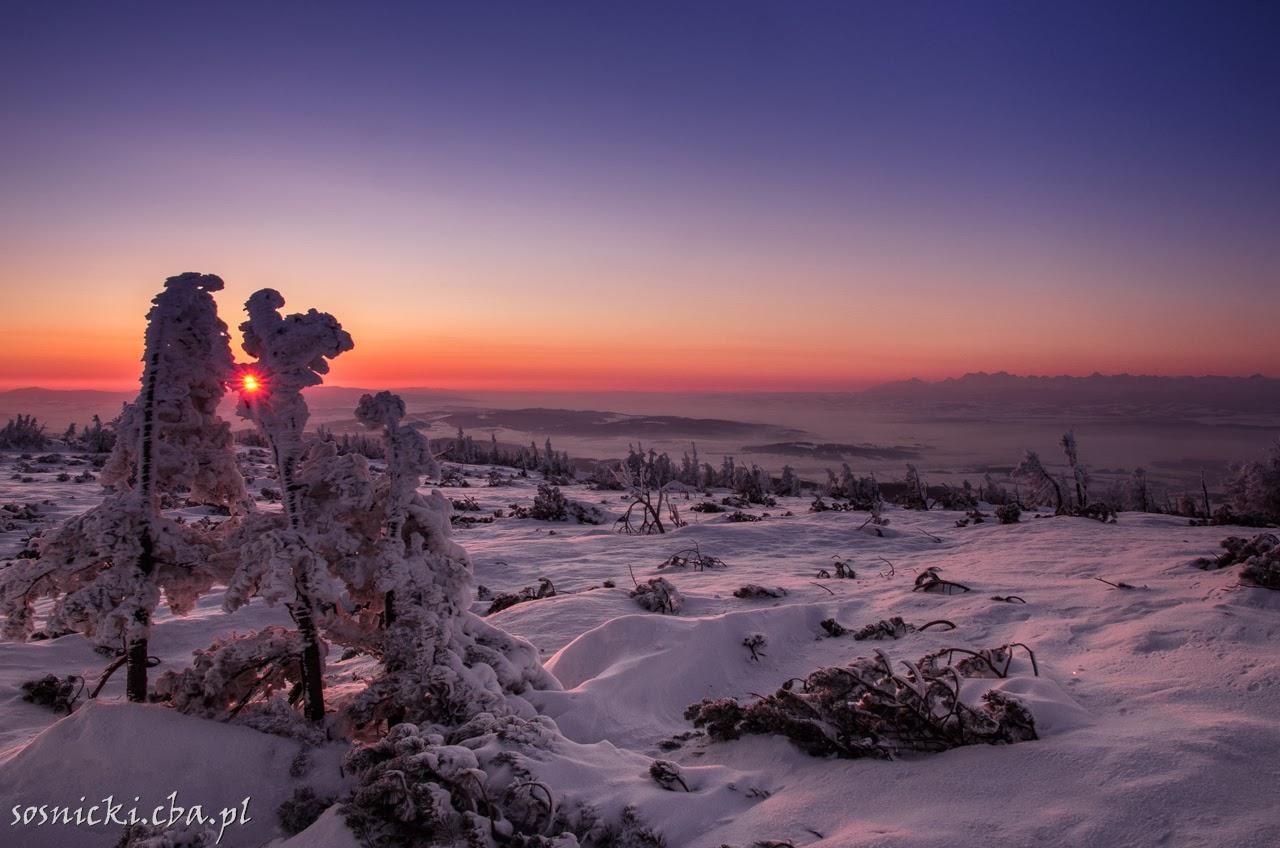Marcowy wschód słońca na Babiej Górze.