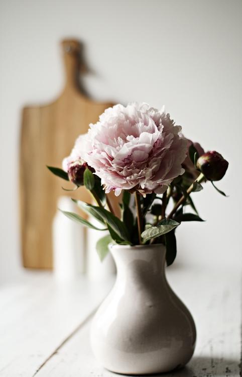 Päonien in einer Vase mit Holzbrett im Hintergrund { by it's me! }