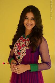 Actress Pooja Jhaveri Latest Stills in Purple Salwar Kameezt at Dwaraka Success Meet  0062.JPG
