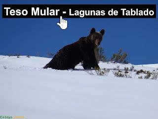 Teso Mular y Lagunas de Tablado
