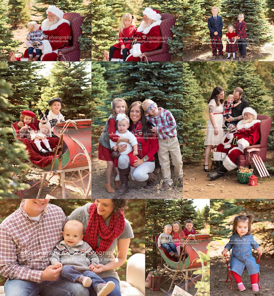 eugene oregon family photographer christmas mini sessions