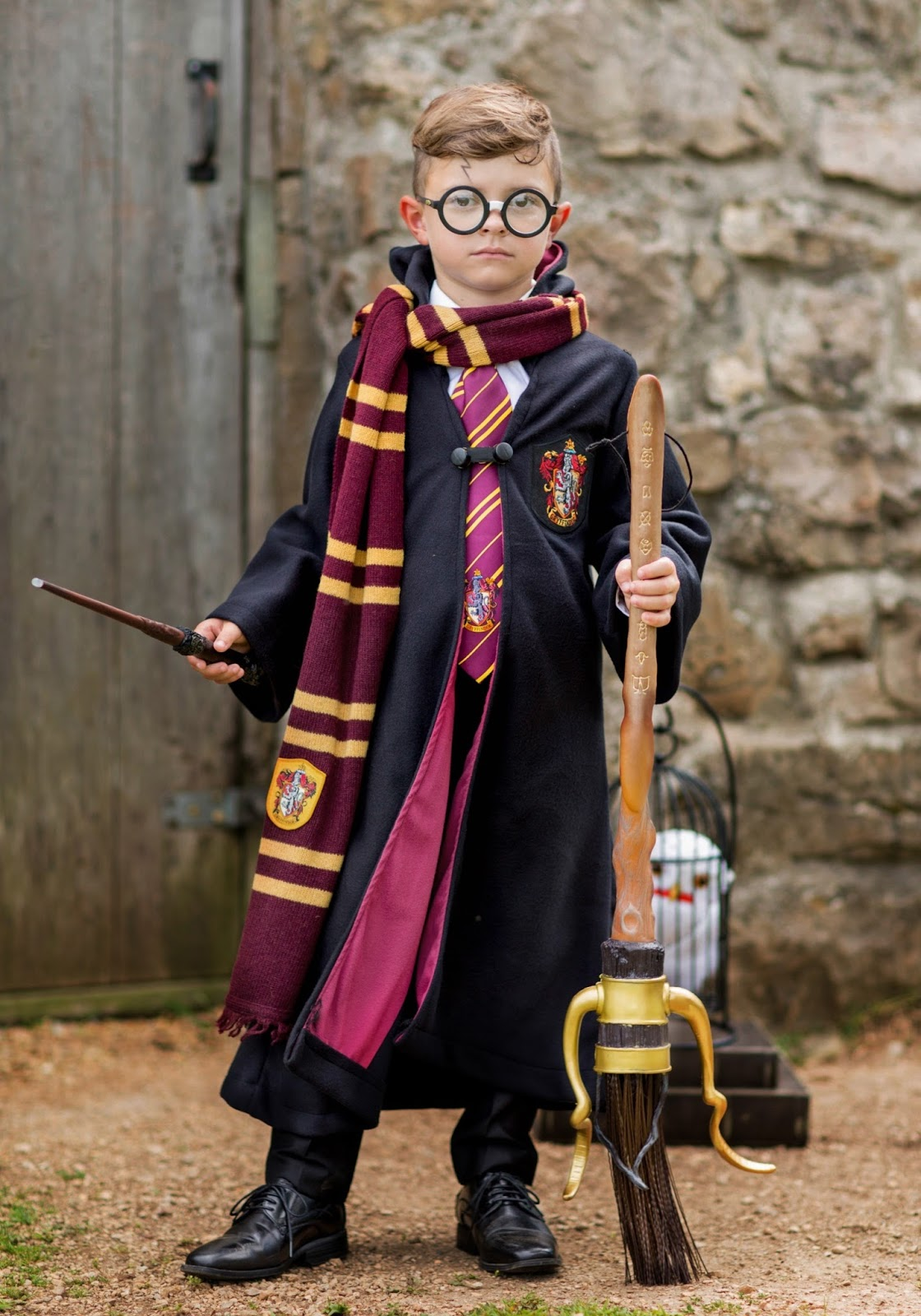 Harry Potter Halloween Costume