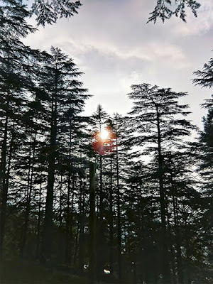 sunset in almora,almora travel blog,stylepanorama,mountains