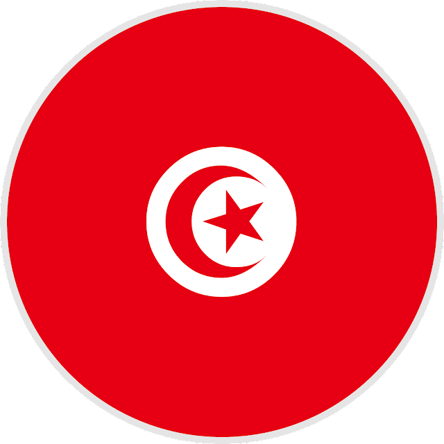 download flag tunisia svg eps png psd ai vector color free #tunisia #logo #flag #svg #eps #psd #ai #vector #color #free #art #vectors #country #icon #logos #icons #flags #photoshop #illustrator #symbol #design #web #shapes #button #frames #buttons #apps #app #science #network