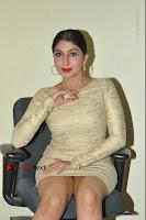 Actress Pooja Roshan Stills in Golden Short Dress at Box Movie Audio Launch  0068.JPG