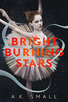 all about Bright Burning Stars by A. K. Small
