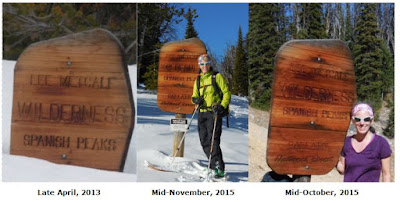 The wildnerness boundary sign in Beehive is a great place to measure the snowpack.