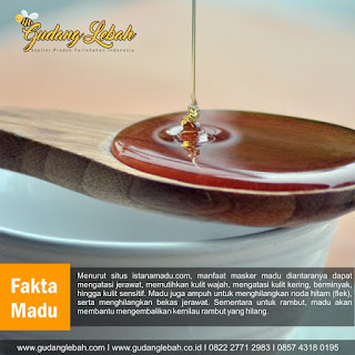 distributor madu asli, madu asli, madu untuk masker, manfaat madu, manfaat madu untuk wajah, masker madu, masker madu untuk jerawat, madu untuk kosmetik
