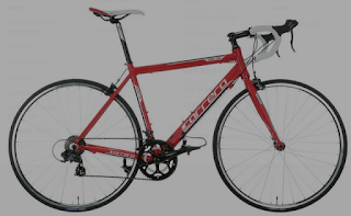 Stolen Bicycle - Carrera Zelos