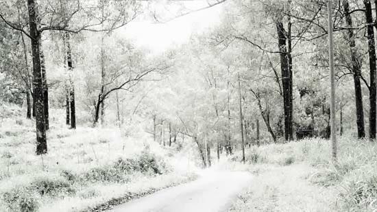 Tutorial Transformar Paisaje de Verano a Invierno con Photoshop Imagen Final
