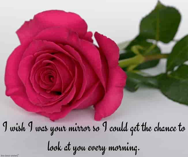 good morning text for her my love with rose