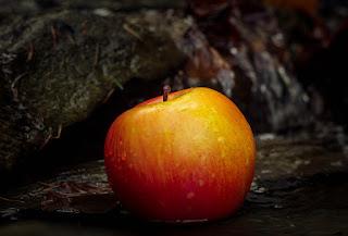 قصص قصيرة | قصة العجوز و بائع التفاح البخيل