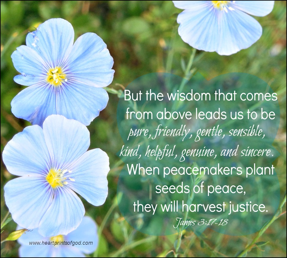 Heartprints Of God: The Wisdom From Above~