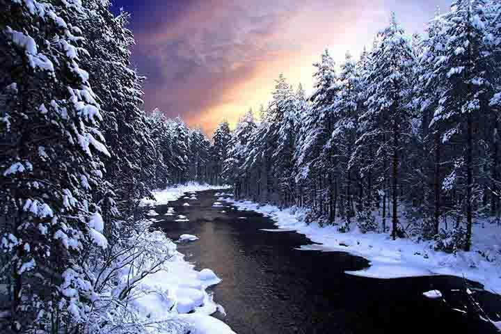 ormanda kış resimleri