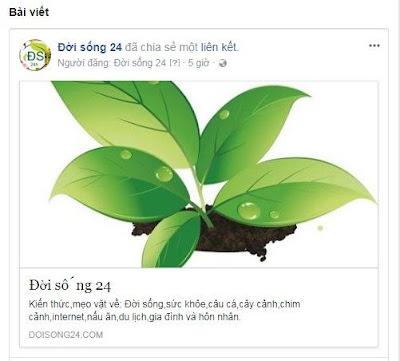Sửa lỗi facebook không cập nhật ảnh trang chủ và trang bài viết của blogspot khi share link do thay đổi ảnh