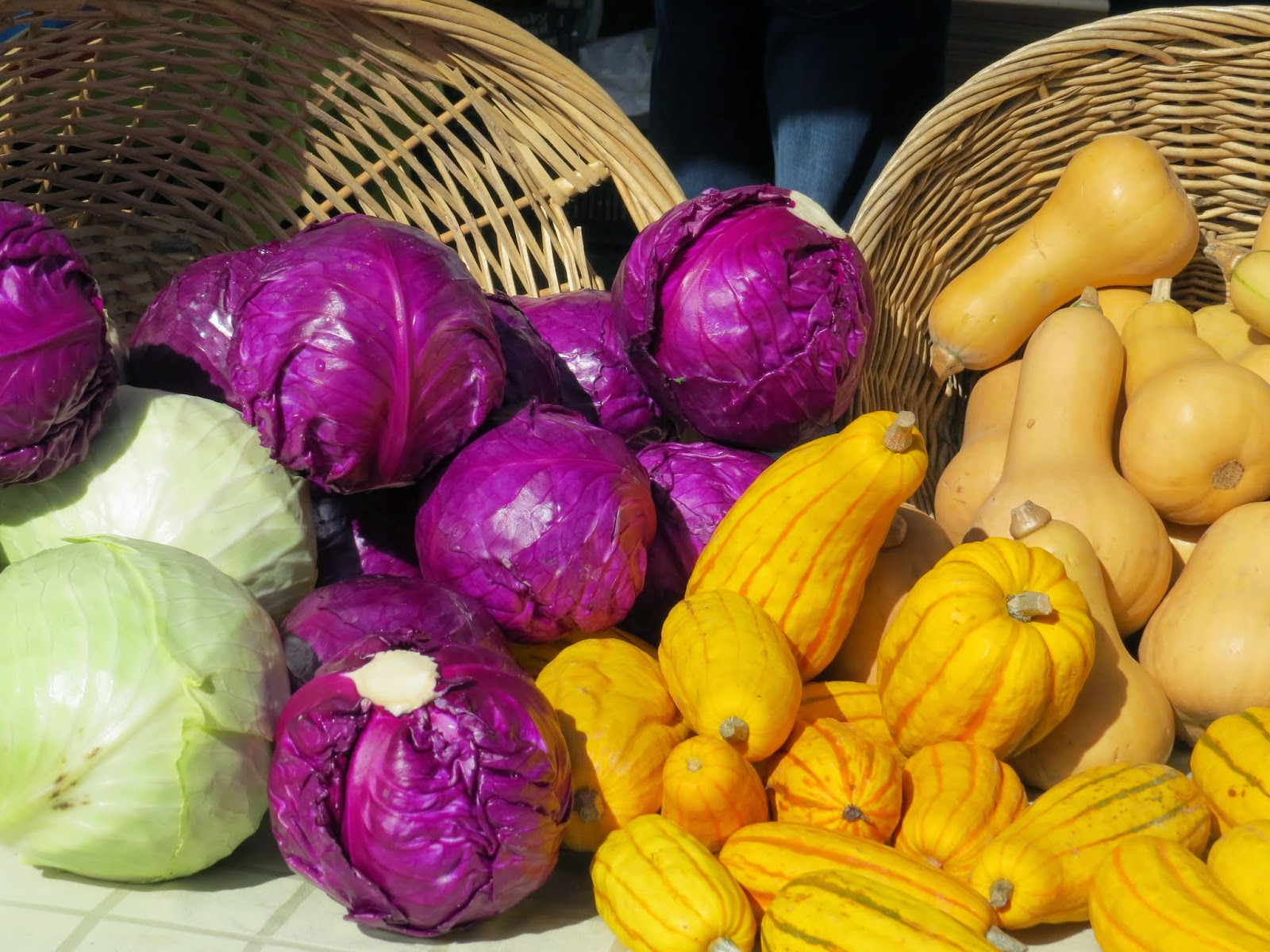 basket of cabbage and squash
