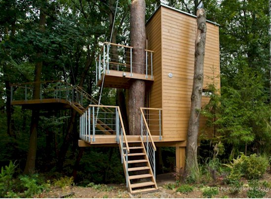 13 Times Humans Respected Mother Nature - Apartments in Poland that incorporate the surrounding forest into their design.