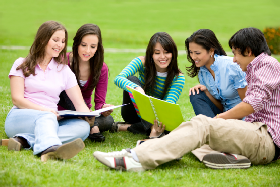 Improve Grades with These Study Group Ideas - ThoughtCo