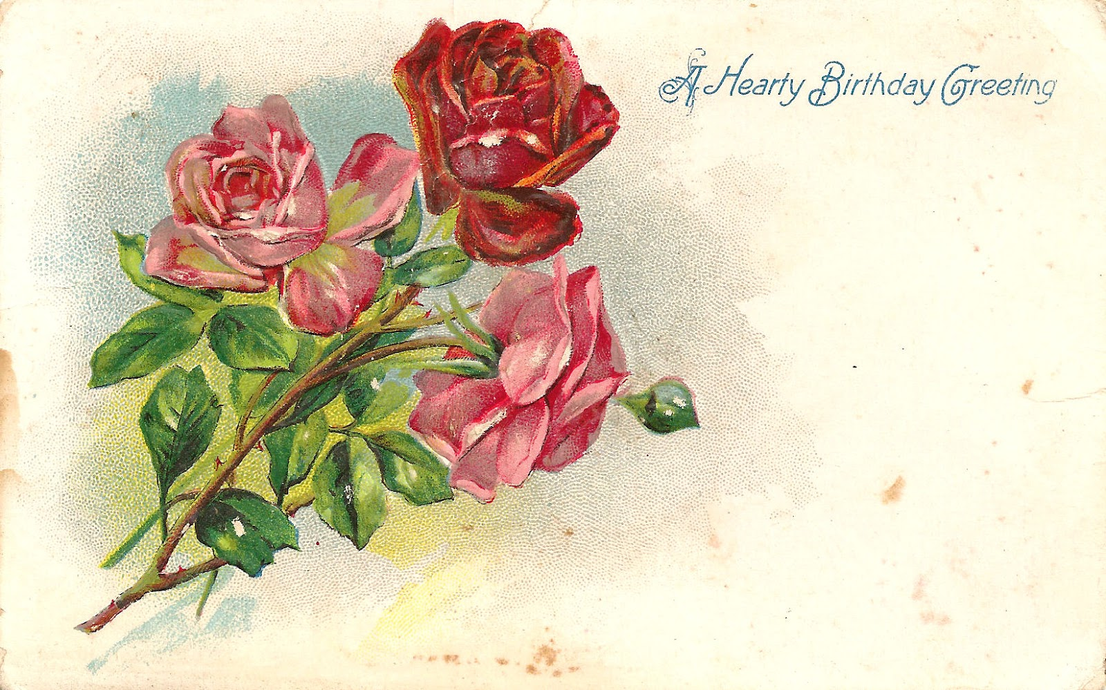 Antique Images Free Flower Clip Art 3 Red And Pink Rose Graphics