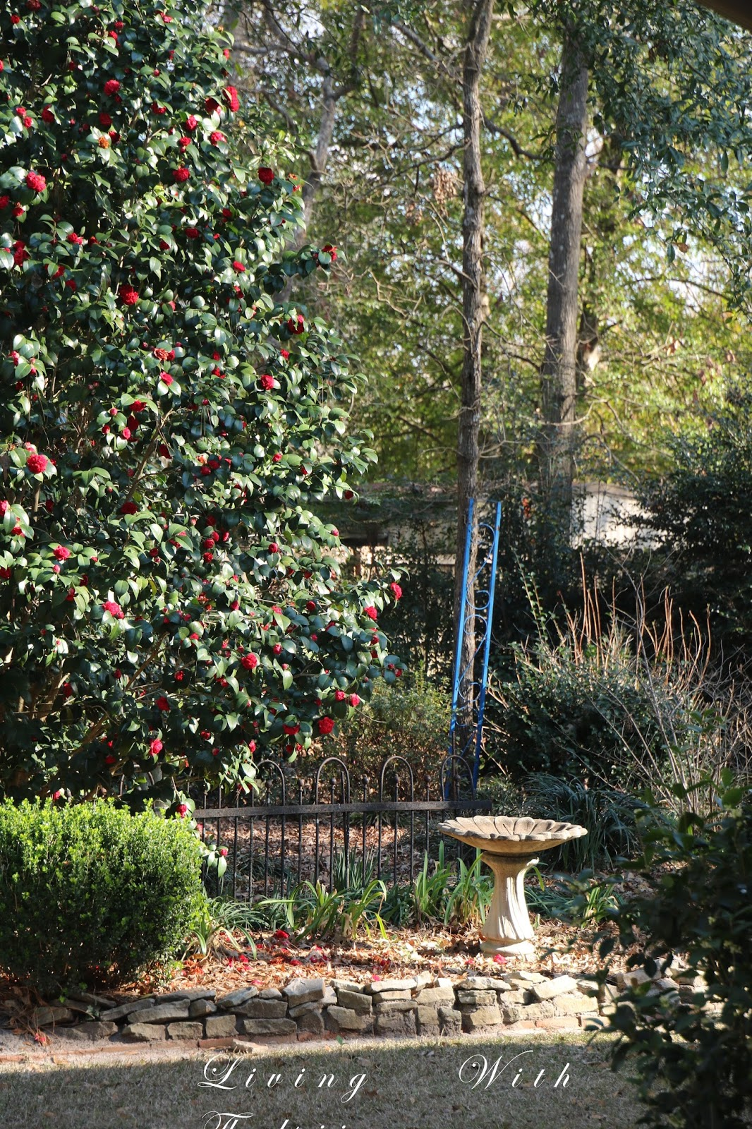 Robins Kitchen Garden City A Beautiful Day In The Garden Living With Thanksgiving