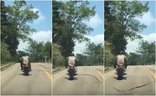 Biker Nyaris Dipatok Ular Di Jalan Raya Hutan ...Ngeriii Loncatan Ular itu gais...